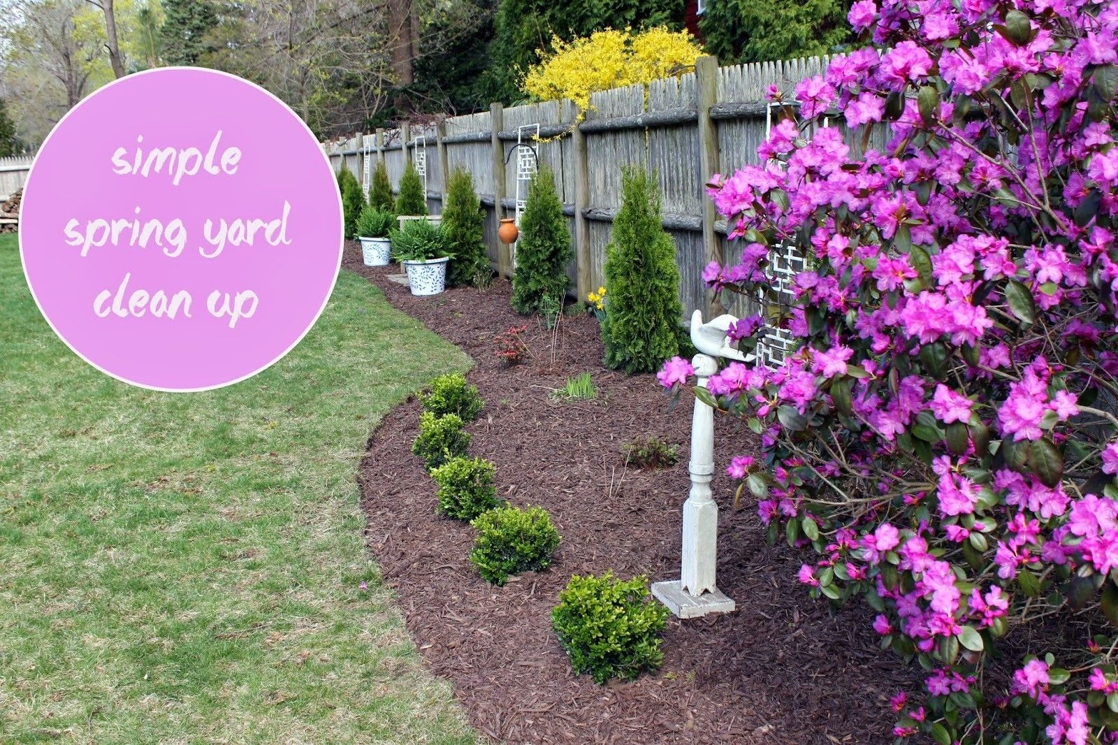 Backyard Clean Up Simple Spring Yard Clean Up Ideas