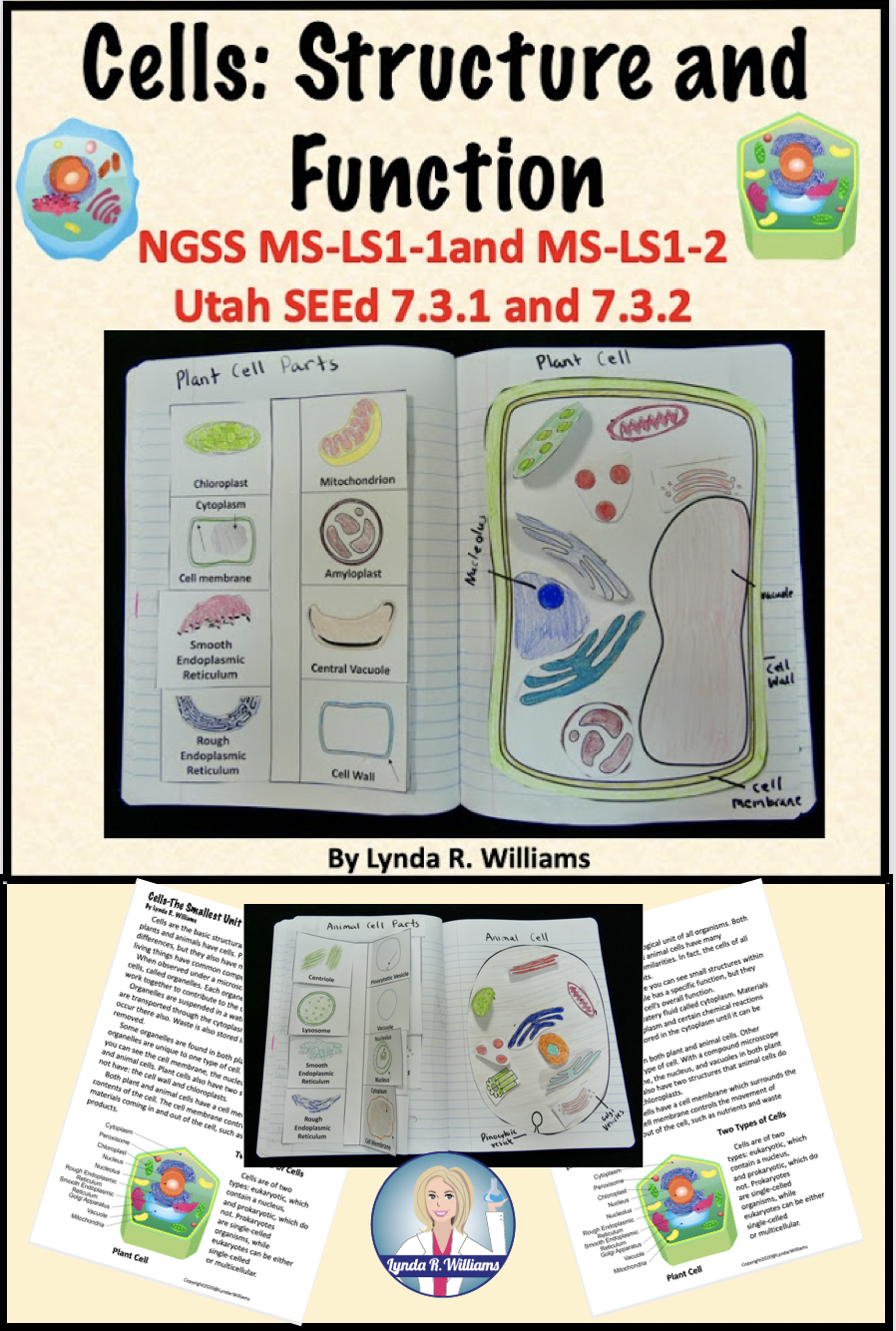 Fun Cell Parts And Function Activities For Middle School Teaching Science With Lynda R Williams Animal Cell Lesson Plan Cell Lesson Plans Cell Parts And Functions [ 1334 x 898 Pixel ]