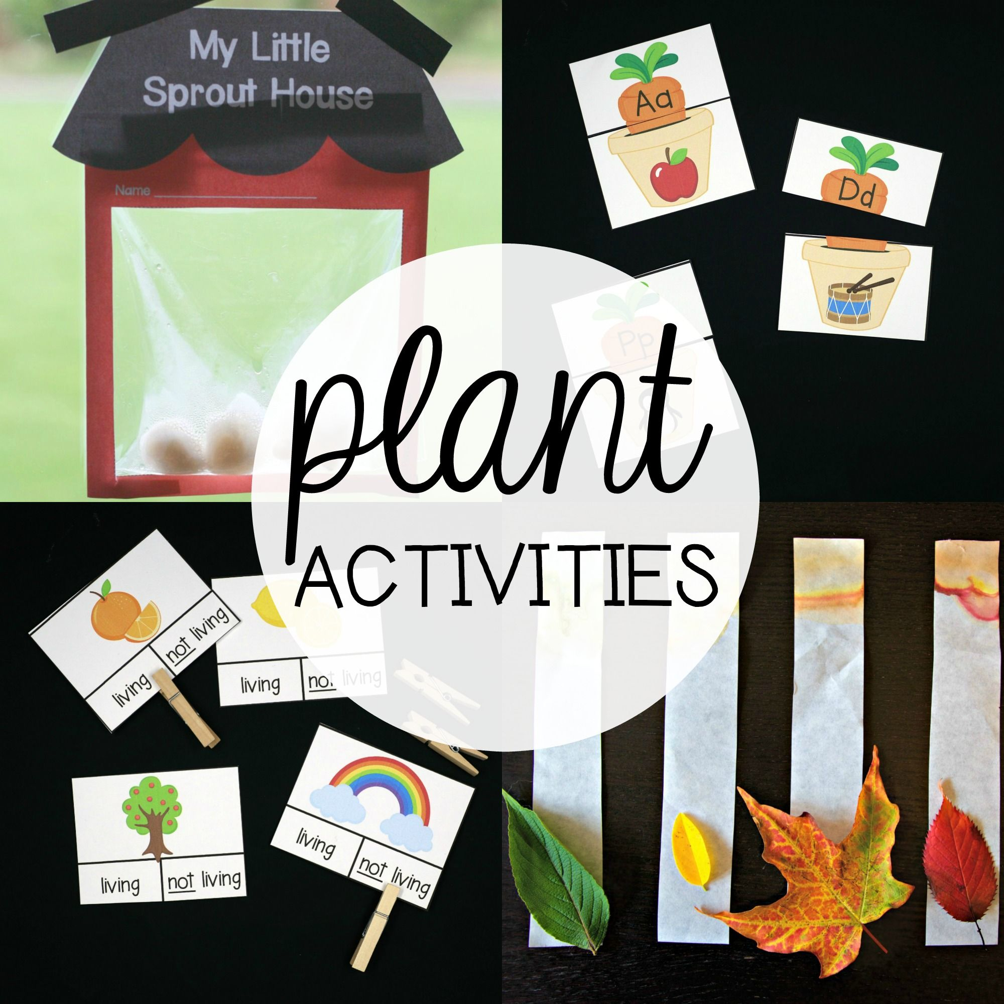 Plant Activity Pack