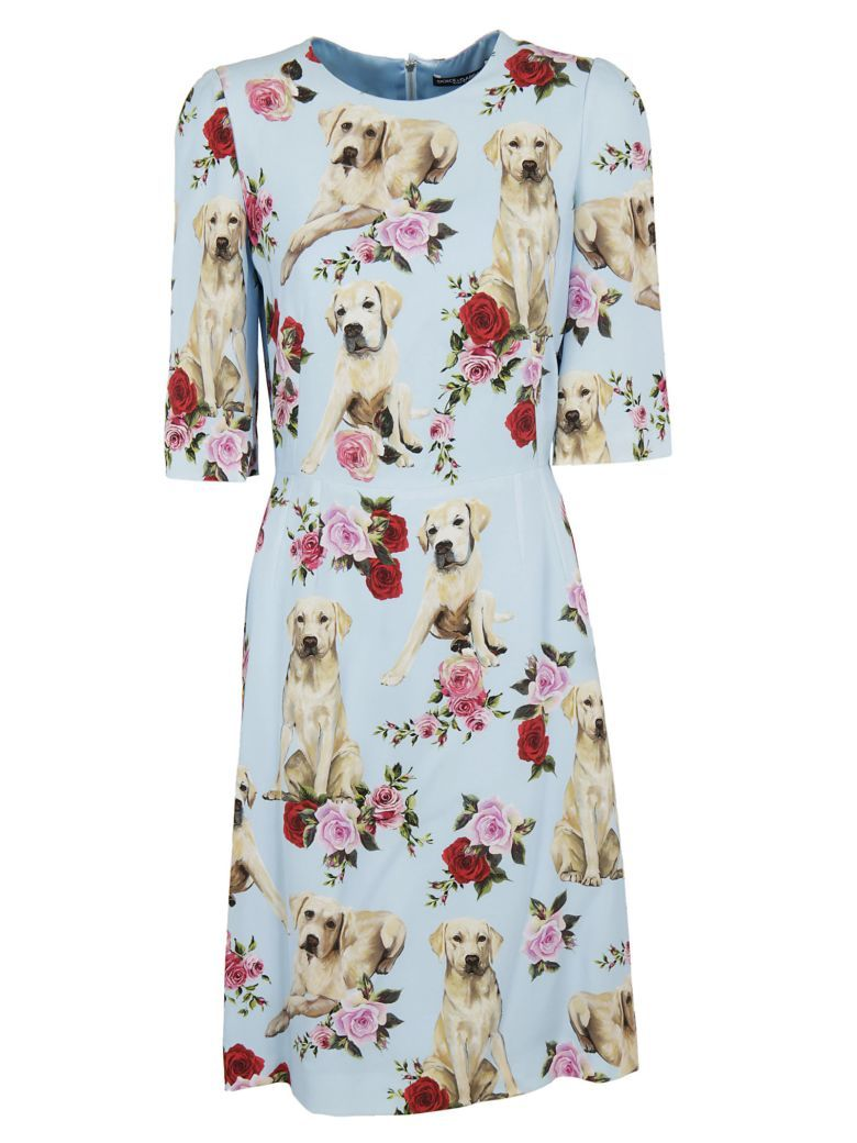 2fc280e8d9 DOLCE   GABBANA Dolce   Gabbana Labrador Printed Dress.  dolcegabbana   cloth