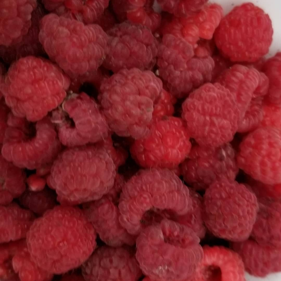 The second round of raspberries!