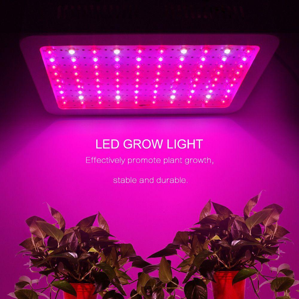 Full Spectrum 1000w 600w 400w 200w 100w Led Grow Light Ac 85 265v