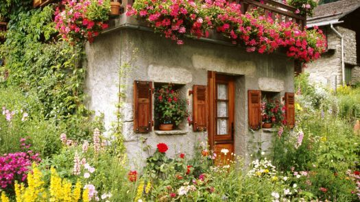 Hd Wallpapers Flower Garden Desktop Wallpaper Colorful Beautiful Cottage Flowers House 1920x1080 Wallpa English Cottage Garden Cottage Garden Beautiful Gardens