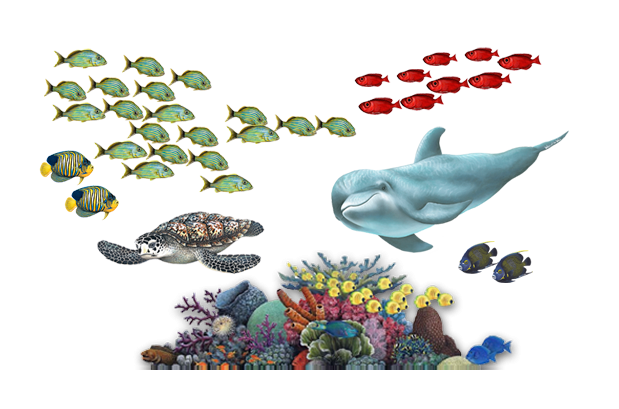 Cool underwater wall stickers for kids bedroom - relaxing yet fun!