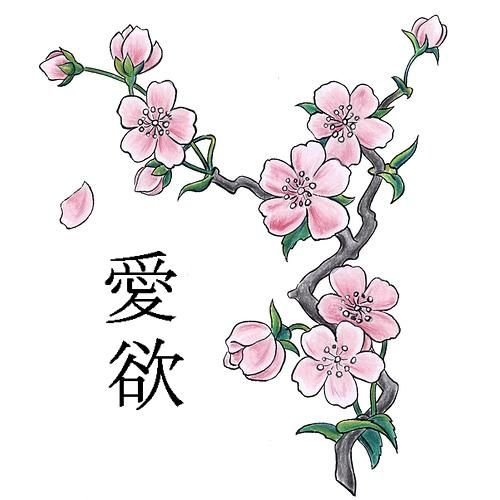 cherry blossom tattoos; chinese and other variations | cherry ... - Cherry Blossom Tree Coloring Pages