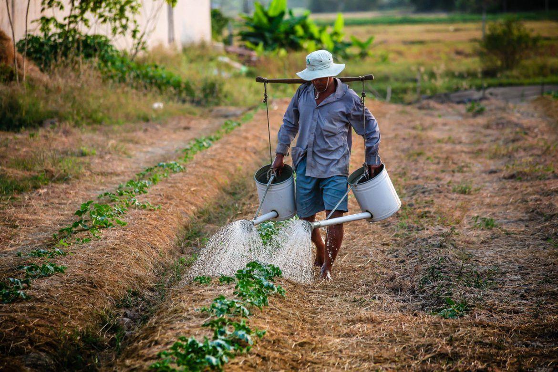 ندرة المياه أزمة توفير المياه الصحية والمرافق النظيفة في