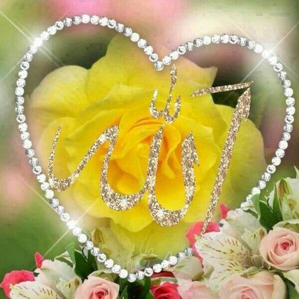 Pin By Jeteaimeamor30 On Rose Flowers Allah In Arabic Kaligrafi Allah Allah Wallpaper