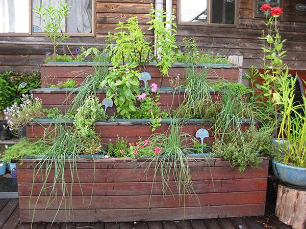 Layering Backyard Garden Landscaping Tips