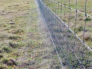 Superieur Garden Zone Gardu0027n Fence Rabbit Guard U2013 Specially Designed To Keep Pest  Rabbits Out