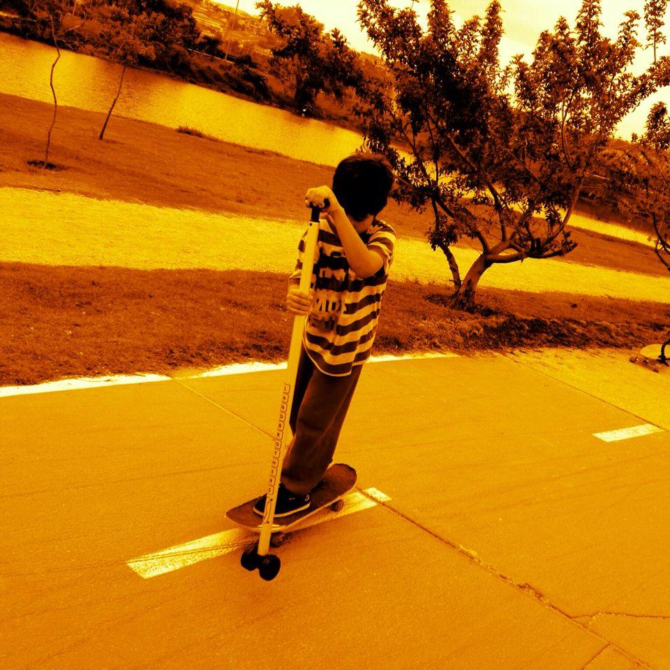 Landbrothers Skate Paddle