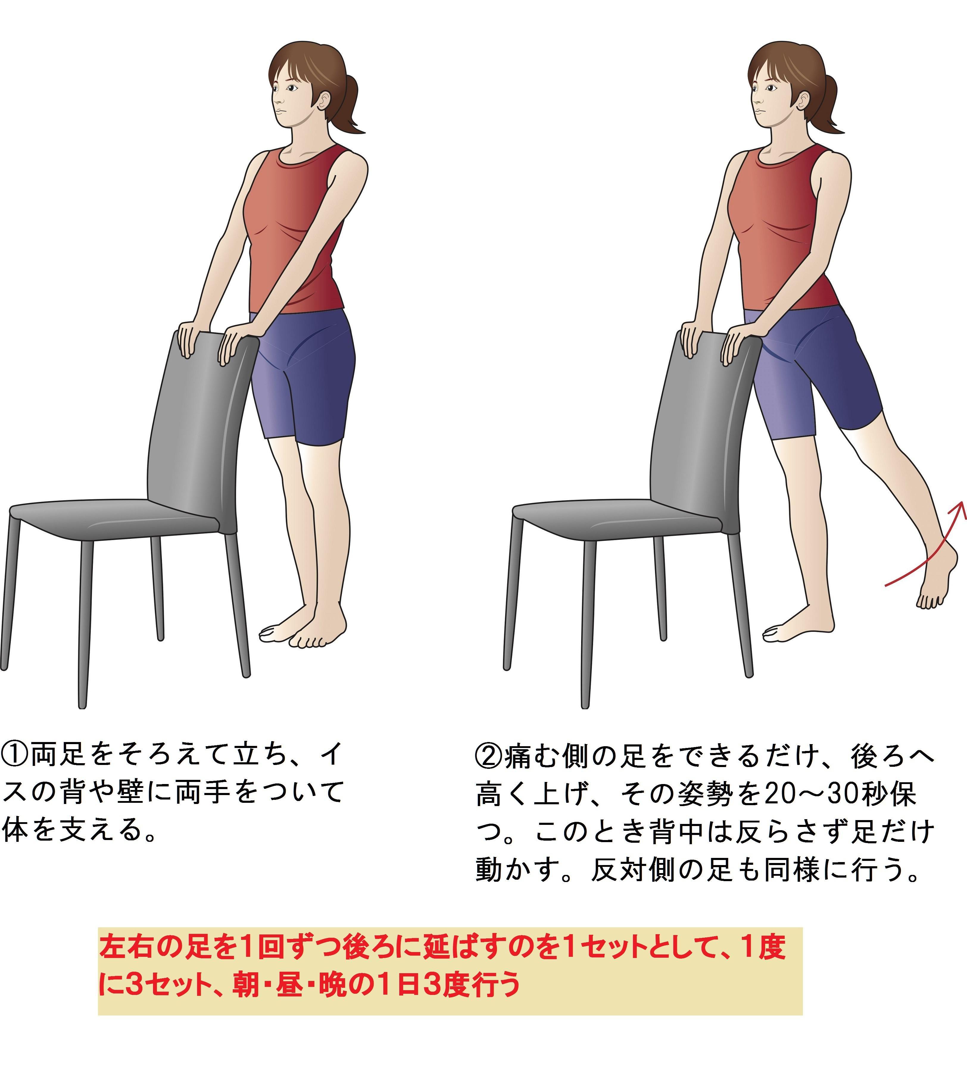 痛 トレ 股関節 筋