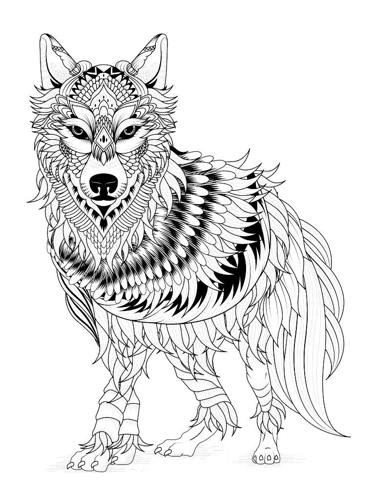 Husky Mandala Coloring Pages
