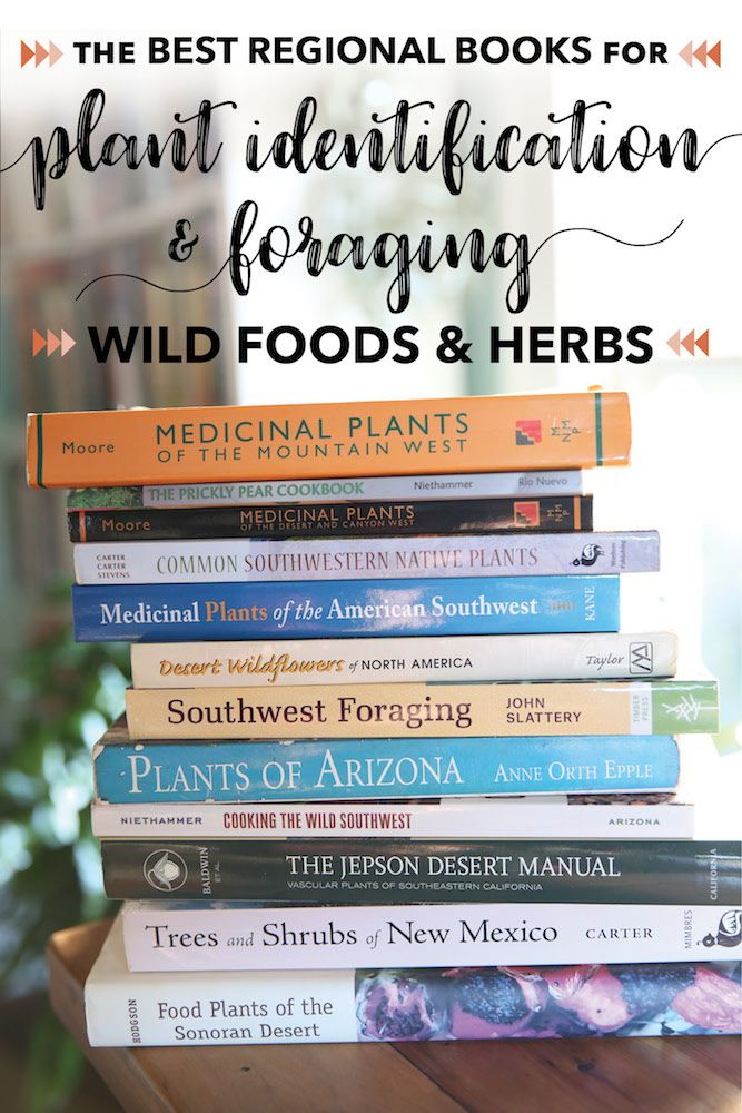 The Best Regional Books For Plant Identification And Foraging Wild Foods Herbs Blog Castanea
