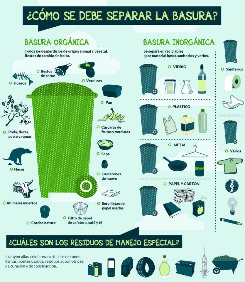 ¿Cómo se debe separar la basura?   Info: La Bioguia