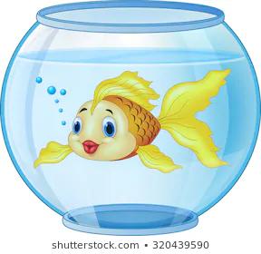 Gold Fish Aquarium On White Background Stock Illustration 209906827 Golden Fish Aquarium Drawing Drawing For Kids