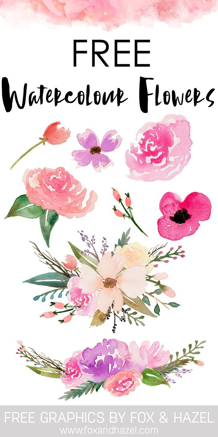 Free Watercolor Flower Graphics From Fox Hazel Free Watercolor Flowers Free Clip Art Watercolor Flowers