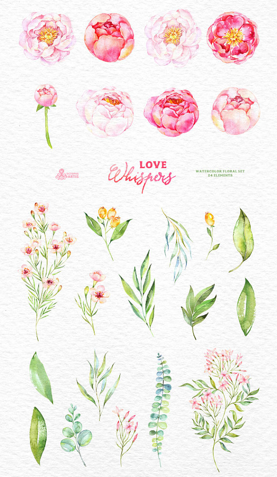 Love Whispers: 24 Watercolor Floral Elements by OctopusArtis