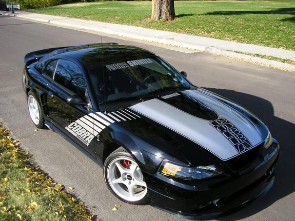 99shinodacobra S 1999 Ford Mustang In Ford Mustang Mustang