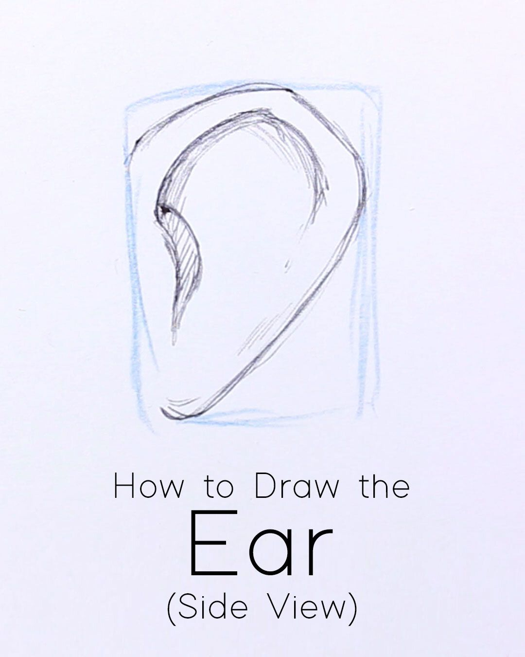 How To Draw Ears From The Side Step By Step Tutorial For
