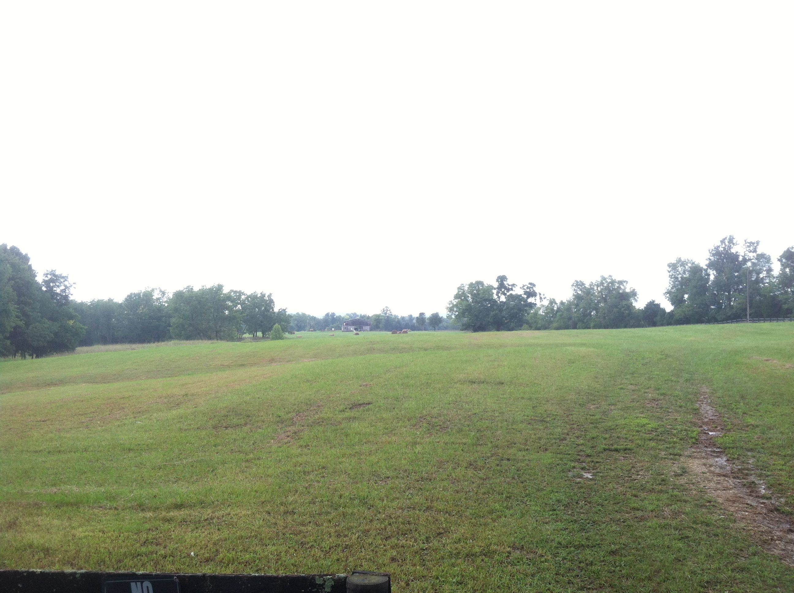 The Kentucky lot prior to construction on Aug 9th 2013. Mason construction starts digging Aug 14th!!