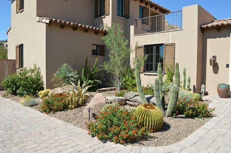 Petit Jardin Cactees Plante Grasse Desertlandscaping Avec Images