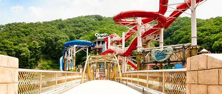 Ocean world water park near seoul seoul pinterest seoul water ocean world water park near seoul gumiabroncs Image collections