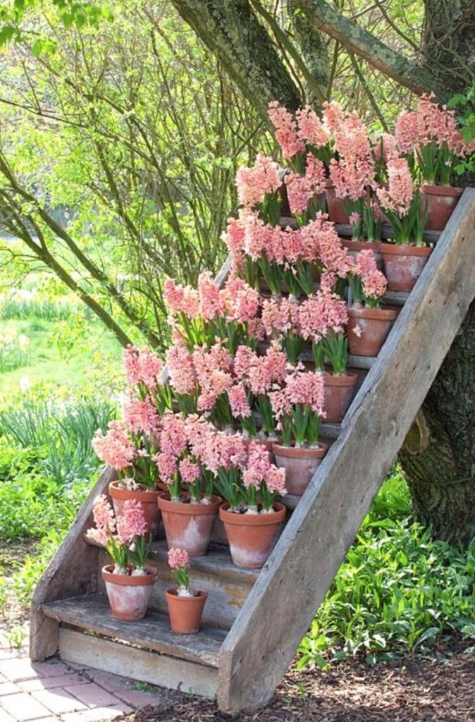 15 Unique and Beautiful Container Garden Ideas - Sanctuary Home Decor