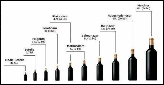 Bottle size chart wine drinks infographic infographics sizes education also pinterest rh