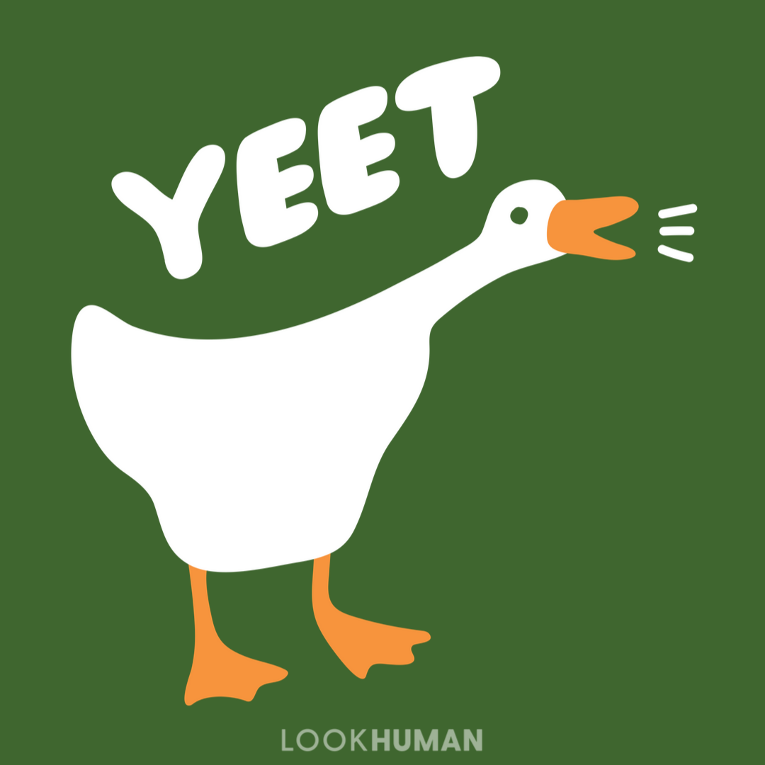 Yeet Goose Goose Drawing Cute Art Cute Drawings