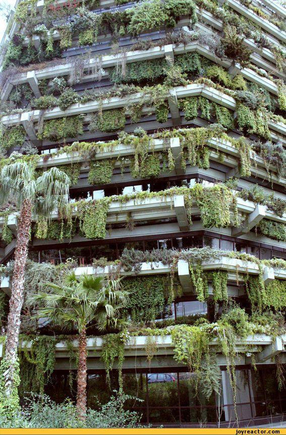 vertical garden in barcelona Vertical garden, Barcelona, Spain. | City / Country