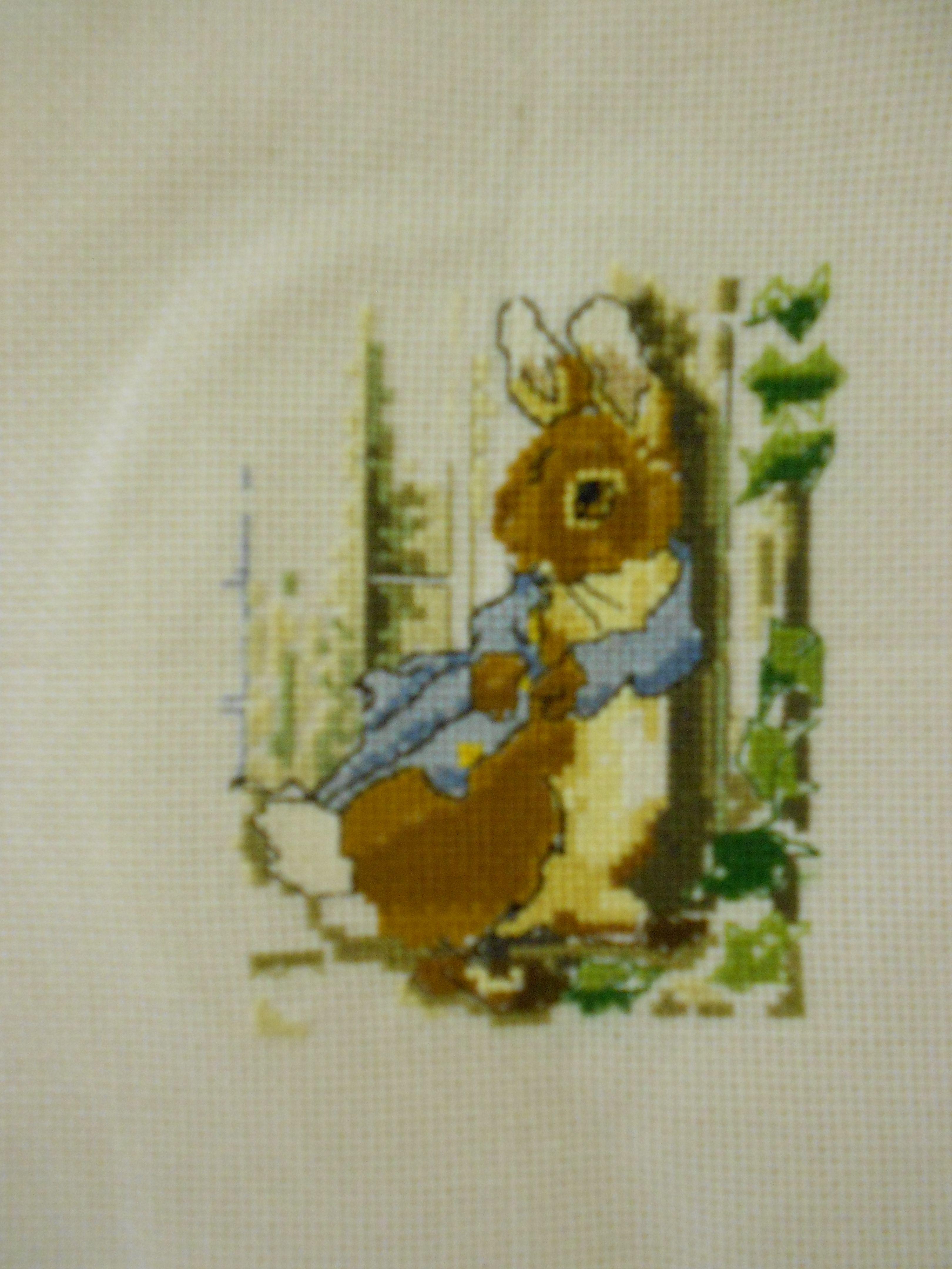 peter rabbit xstitch