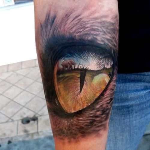 Eye And Reflection Stefano Alcantara This Doesn T Even Seem Possible To Tattoo This Kind Of Detail Am Realistic Eye Tattoo Cat Eye Tattoos Africa Tattoos