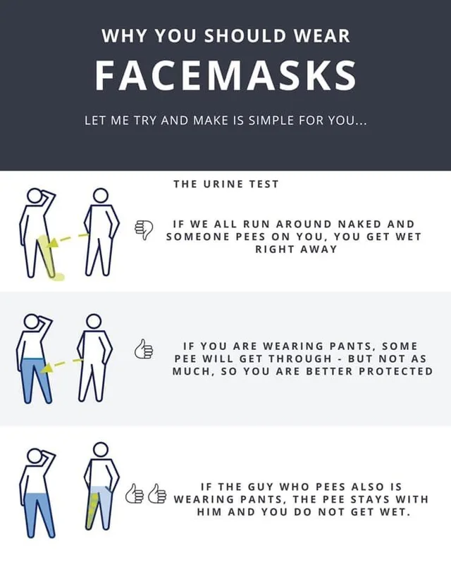 Wear A Mask Meme Pee