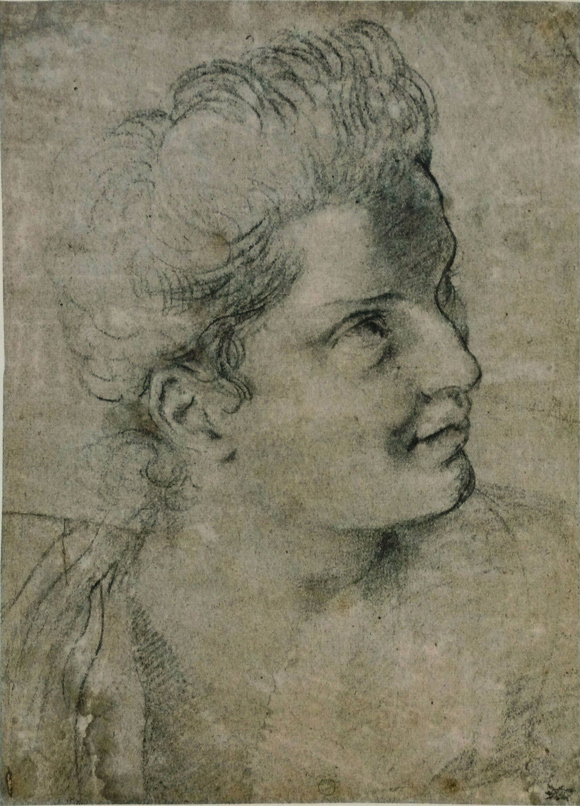 A Woman Looking Left - Caracci