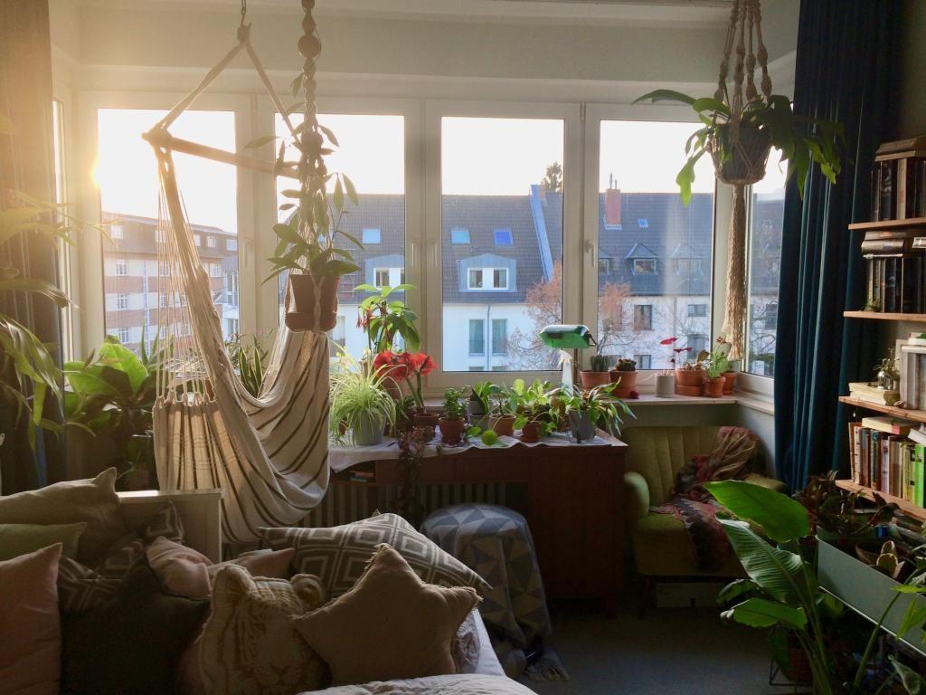 Zimmerpflanzen Schlafzimmer ~ Pflanzen schlafzimmer bilder diese pflanzen solltest du im