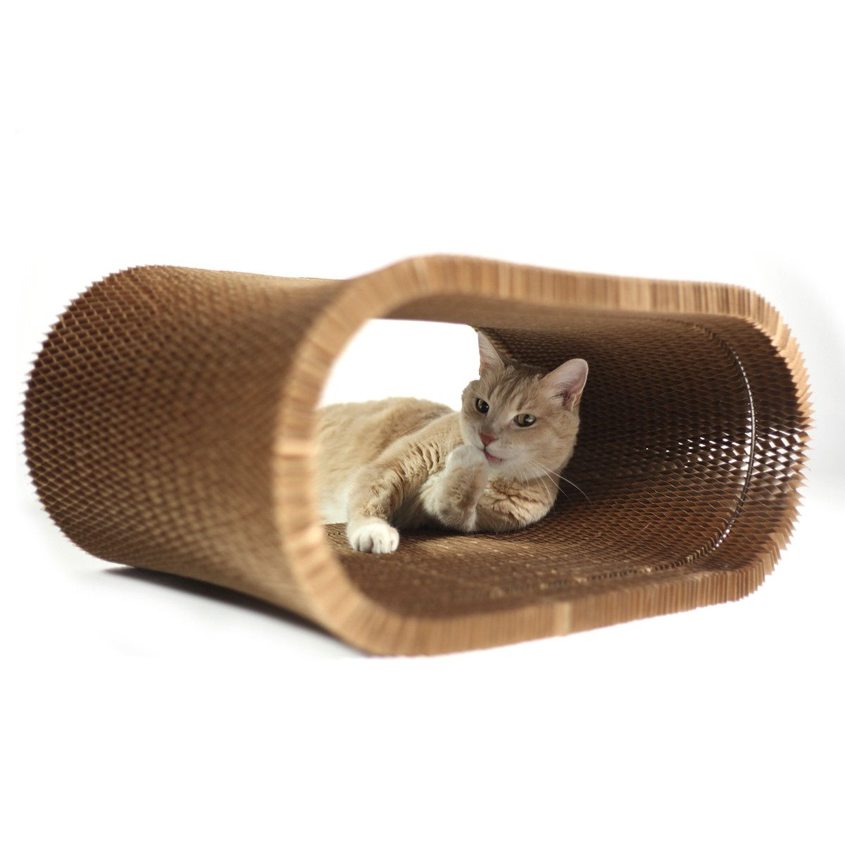 earth friendly furniture. KittyNest Is An Earth-friendly Hangout For Your Cat That Can Be Used As A Earth Friendly Furniture