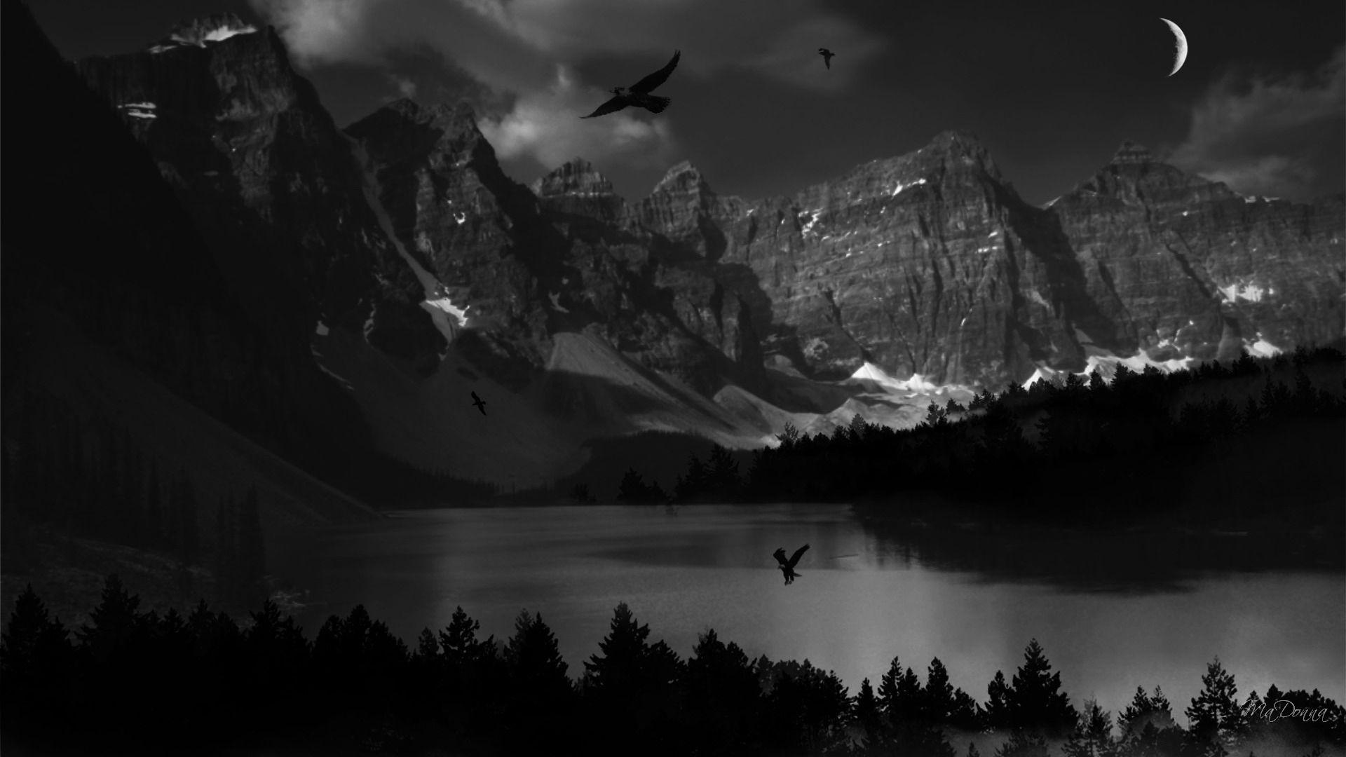 Pin by Adam Vincent Lanegan on Darkness in a different light in 2019 | Dark wallpaper, Dark ...