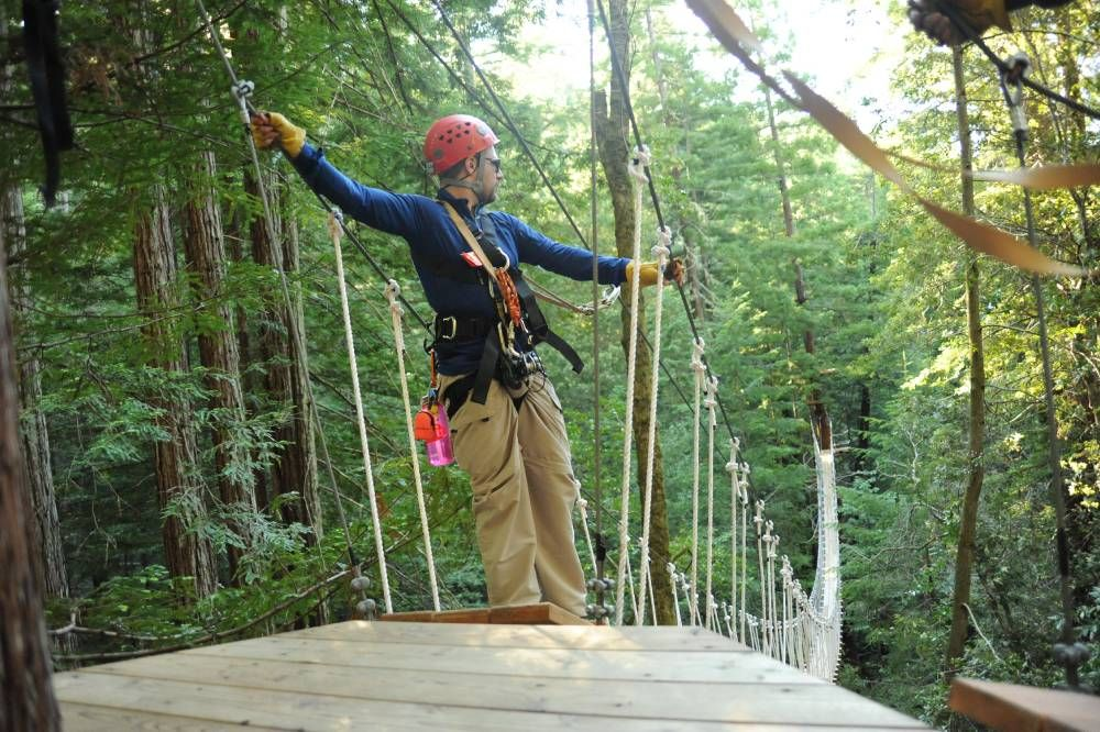 & sonoma canopy tours - Google Search | Road Trip | Pinterest | Road trips