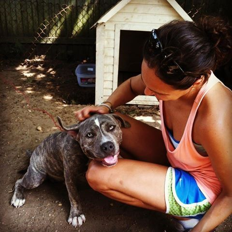"""Unchained NY's co- founder visiting with """"Red"""", one of many dogs on our Outreach Program. Making a difference for chained dogs on Long Island NY"""