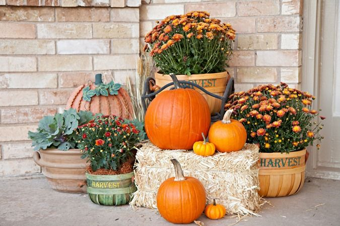 Great Front Porch Fall Outdoor Decor Fall Decorations Porch Fall Halloween Decor