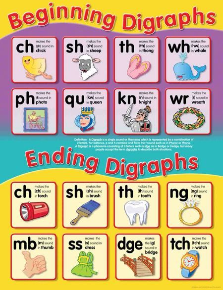 Laminated Beginning/Ending Digraphs educational chart. Read More ...