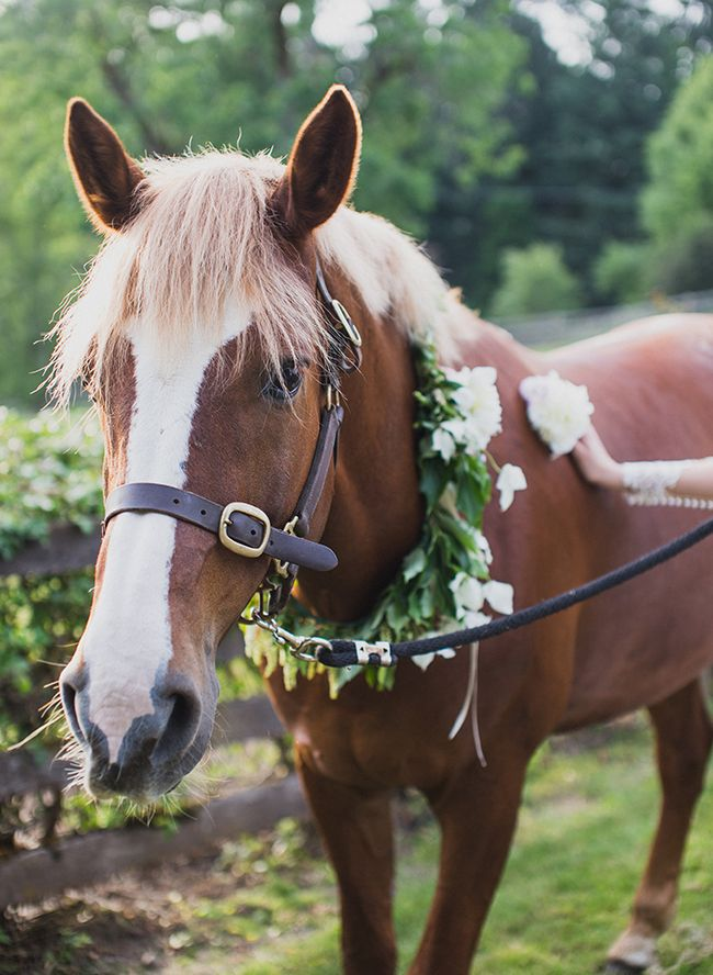 Romantic Equestrian Wedding - Inspired by This