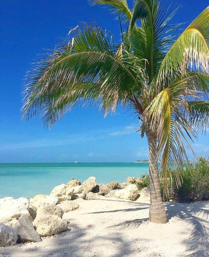 Photo of StaySaltyFlorida Instagram. Key West.