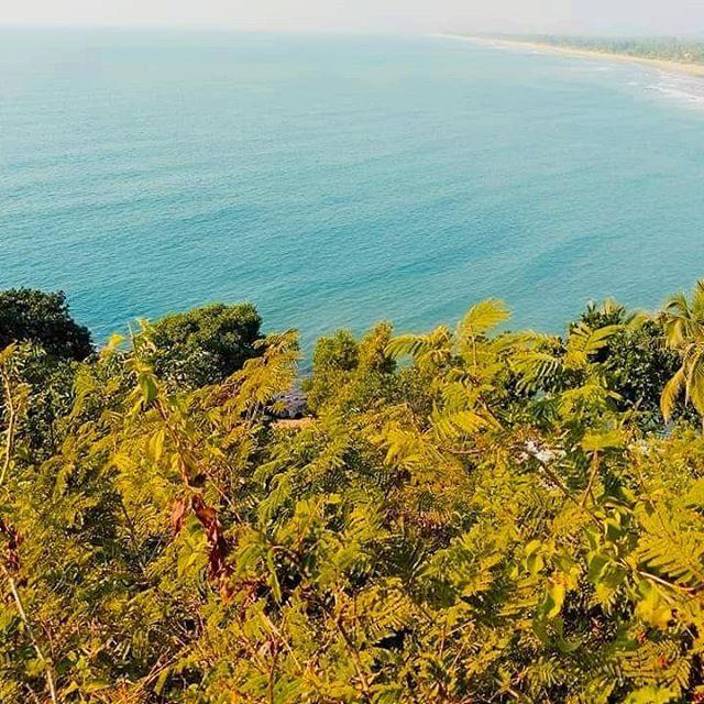 PED-PAUDHE AUR SAGAR KI MAUJEIN 🏝️ #ombeach #beachlife #gokarna #karnatakadiaries #seashore #gokarnadiaries #landscapephotography #yourshot_india #lonelyplanetindia #_travelersofindia  #indiaclicks #travel #explore #outlooktraveller #nature