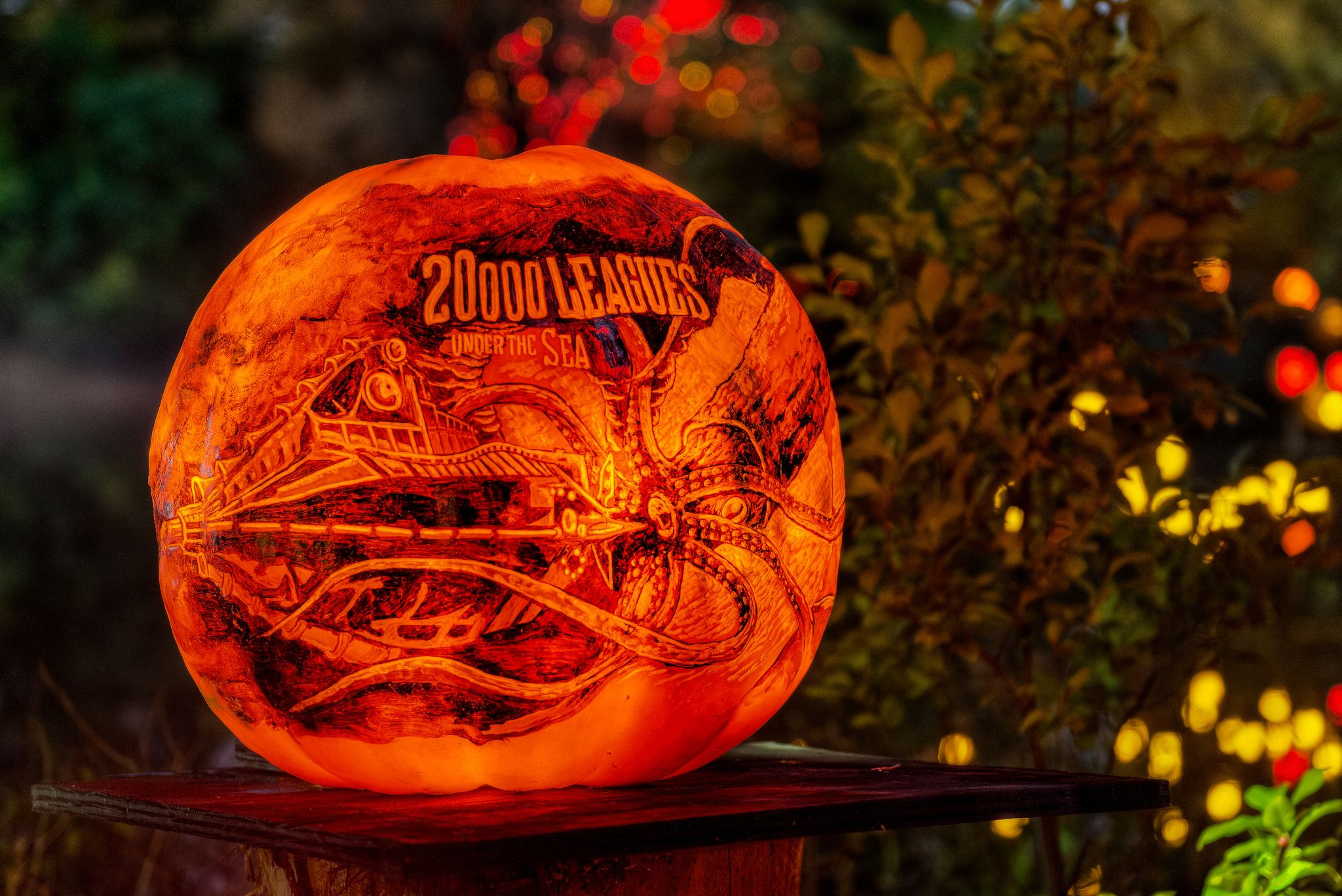 roger williams zoo 2014 jack-o-lantern spectacular | cr8tv2