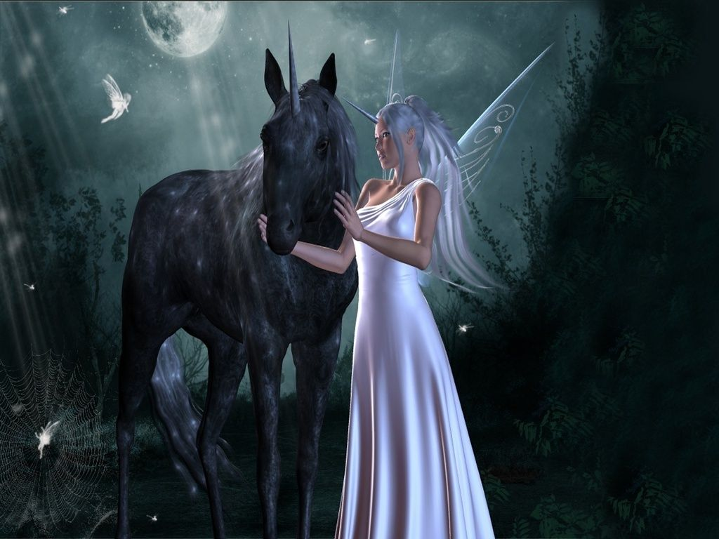 image detail for fairy and the unicorn fairies wallpaper