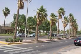 Dhahran, Saudi Arabia- we had an amazing visit with Mark's