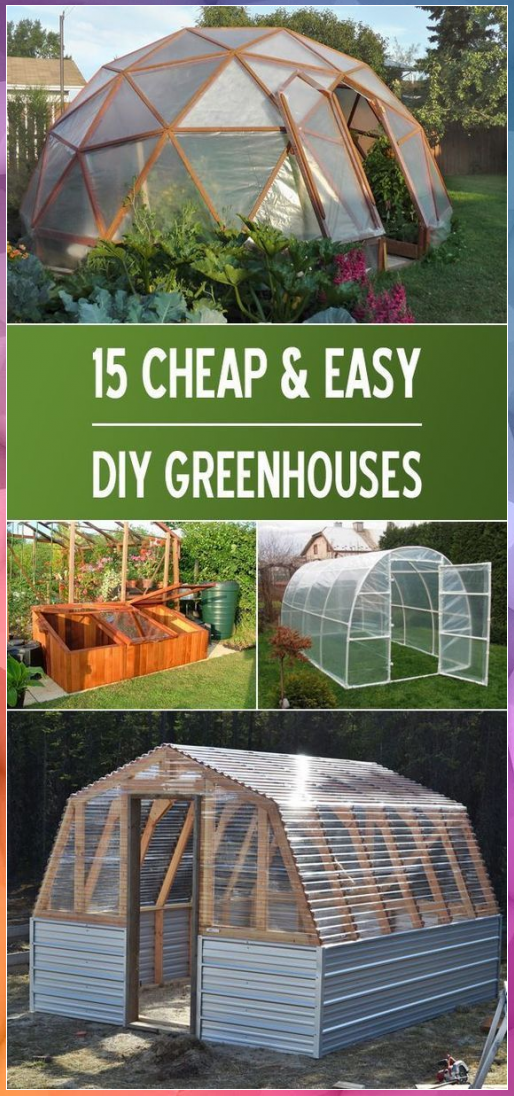 15 Cheap & Easy DIY Greenhouse Projects #cheap #DIY #easy ...