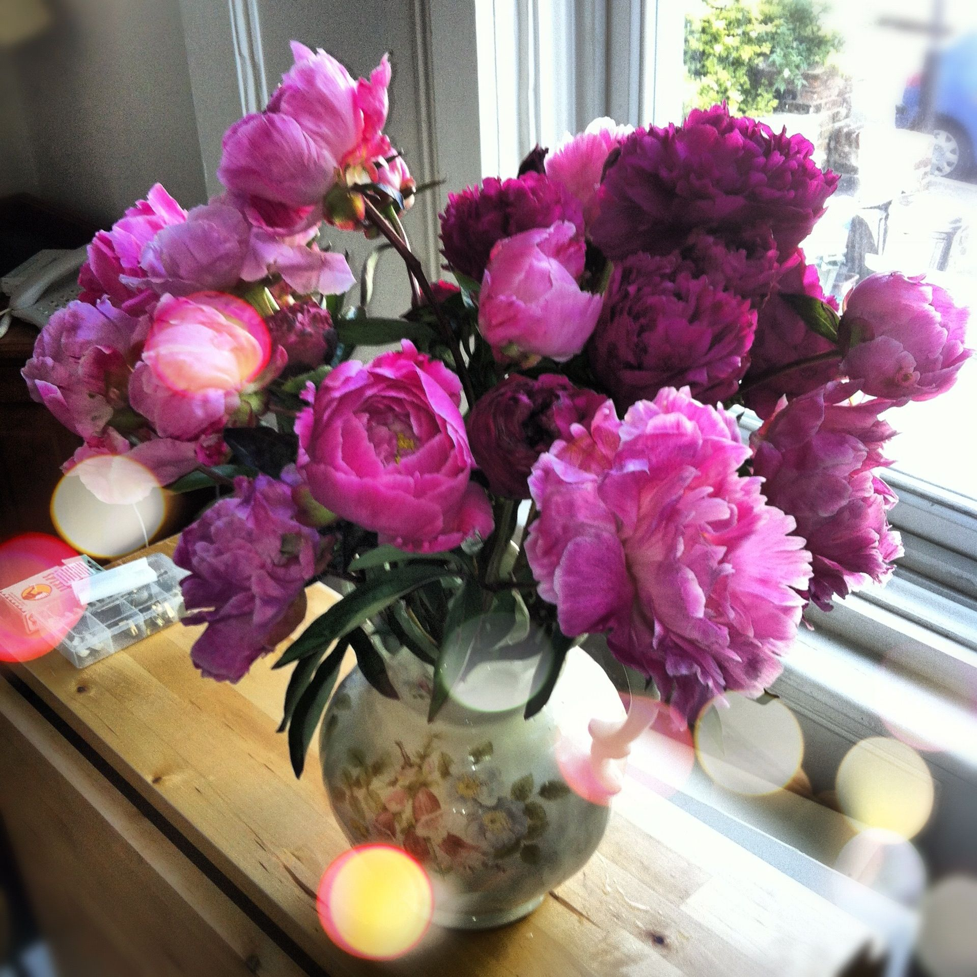 Peonies Season peonies season - google search | flowers | pinterest | peonies