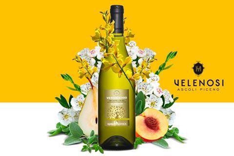 Il vino che vogliamo presentarvi questo mese è il Verdicchio dei Castelli di Jesi DOC Classico Velenosi. Un vino Intenso, equilibrato e persistente. Risulta floreale e piacevolmente fruttato con delle note vegetali che ricordano le erbe aromatiche.  Nelle prossime settimane andremo a svelarvi nello specifico le sue caratteristiche organolettiche, concludendo con i possibili abbinamenti culinari. Seguiteci!